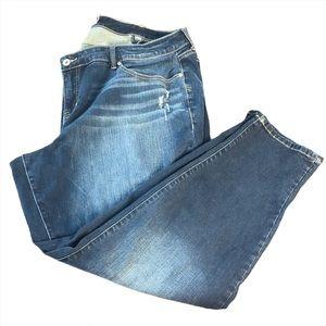 Size 26 Torrid Boyfriend Jeans